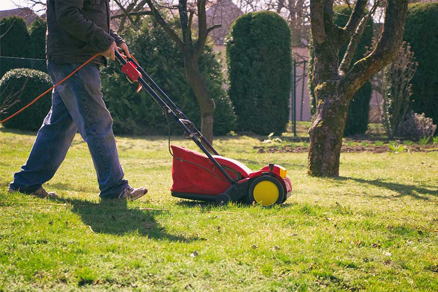 Areacja i wertykulacja gleby jest niezwykle ważna i pomaga utrzymać trawnik w idealnym stanie. Trawnik będzie wtedy gęsty i mocny.